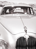 Classic Cars for Rent